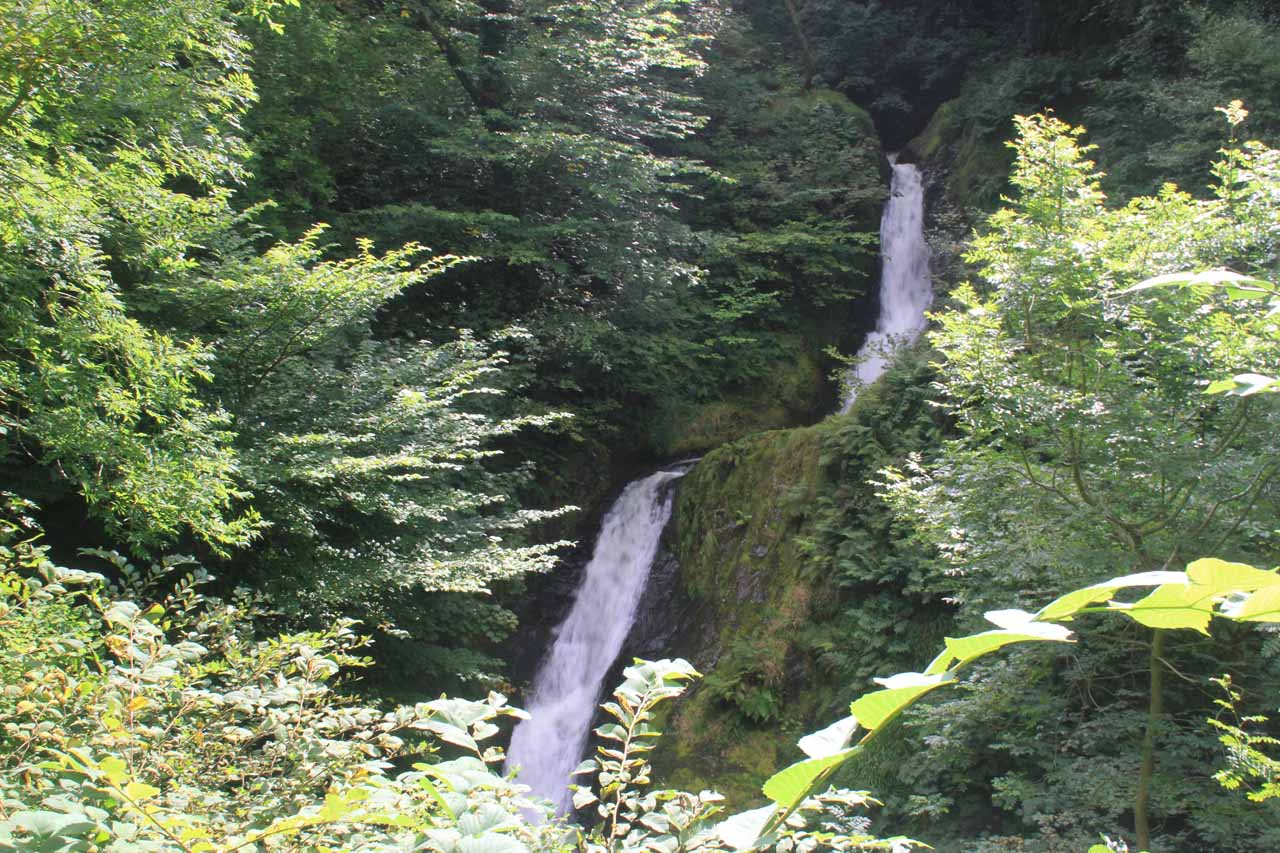 The second of the Dolgoch Falls, which was arguably the tallest and most impressive