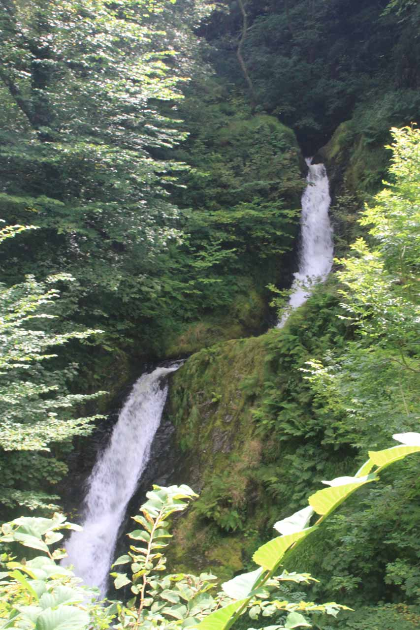 One last look at the Middle Dolgoch Falls