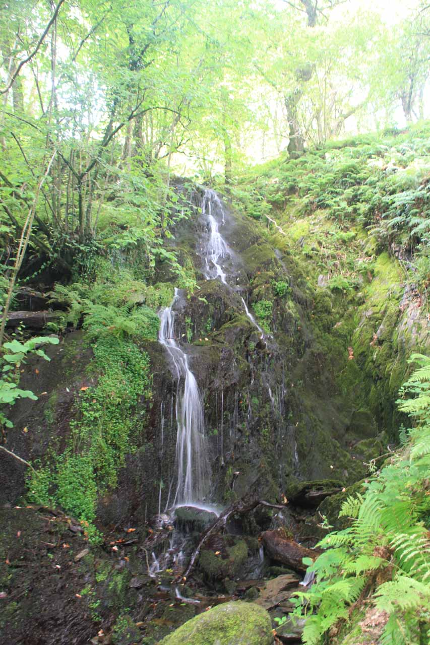 This was a thin but attractive side cascade as we went on the other side of the Nant Dol-goch towards the Lower Falls