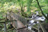 Dolgoch_Falls_106_09022014 - Looking back at the bridge over the Nant Dol-goch