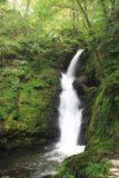 Dolgoch_Falls_123_09022014 - Direct look at the Lower Dolgoch Falls