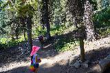 Donut_Falls_024_08092020 - Tahia noticing some trail signage at some junctions along the foot trail to the Donut Falls Trailhead
