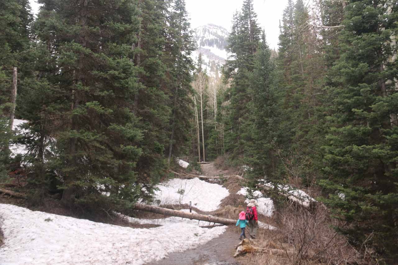 Julie and Tahia getting around and over some residual snow patches along the Donut Falls Trail