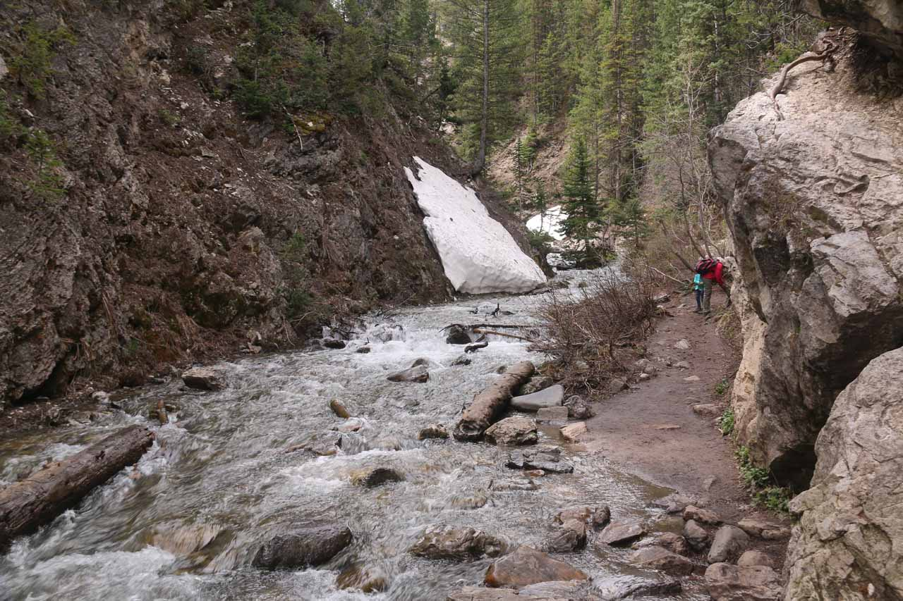 The final stretch of the Donut Falls Trail meandered alongside the Mill D South Fork