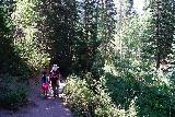 Donut_Falls_067_08092020 - During our mid-August 2020 visit, I didn't recall having to hike through this much forest before the footbridge, but it just goes to show you how fallible memory can be