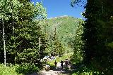 Donut_Falls_273_08092020 - Descending towards the official Donut Falls Trailhead, but we still had to get all the way to the Cardiff Fork turnoff by the Big Cottonwood Canyon Road
