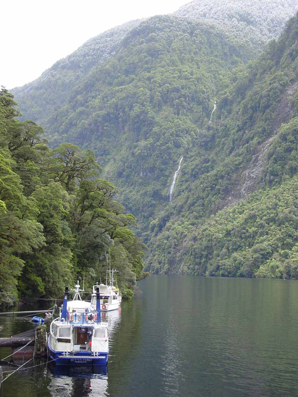 Looking at our boat vessel fronting Alice Falls in the background at the Deep Cove arm of Doubtful Sound