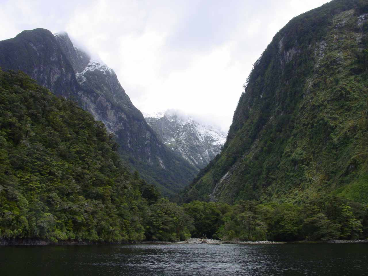One of the attractive side arms of the Doubtful Sound seen during our cruise