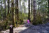 Drift_Creek_Falls_008_04082021 - Tahia starting off on the Drift Creek Falls Trail