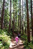 Drift_Creek_Falls_012_04082021 - Julie and Tahia hiking among the tall trees surrounding the Drift Creek Falls Trail