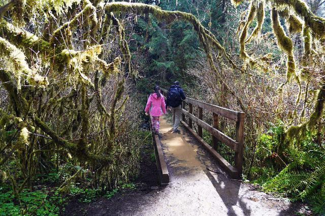 Drift_Creek_Falls_038_04082021 - Julie and Tahia crossing this muddy bridge over Horner Creek en route to Drift Creek Falls