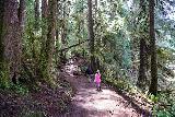 Drift_Creek_Falls_041_04082021 - Julie and Tahia continuing along the Drift Creek Falls Trail somewhere between Horner Creek and Drift Creek
