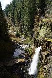 Drift_Creek_Falls_050_04082021 - Looking down at the profile of Drift Creek Falls from the suspension bridge
