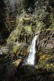 Drift_Creek_Falls_059_04082021 - Portrait view of Drift Creek Falls as seen from the bouncy suspension bridge