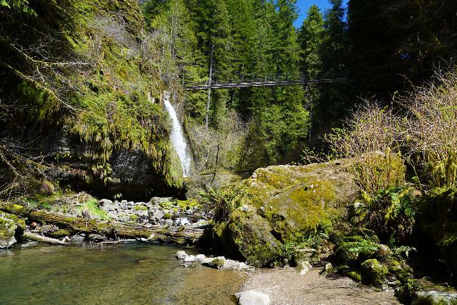 Drift_Creek_Falls_117_04082021 - Distant view of Drift Creek Falls from the banks of Drift Creek at the end of the official trail