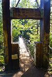 Drift_Creek_Falls_132_04082021 - Going back across the Drift Creek Suspension Bridge