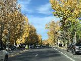 Drive_through_Aspen_007_iPhone_10192020 - Morning drive across East Main Street through Aspen as we were leaving town