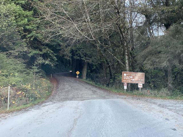 Drive_to_Golds_Bluff_Beach_021_iPhone_11212020 - The turnoff for Elk Meadow Picnic Area was right before where Davidson Road becomes unpaved