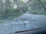 Drive_to_Golds_Bluff_Beach_038_iPhone_11212020 - Looking at a particularly deep depression that we had to cross where some runoff of Squashan Creek cut into Davidson Road