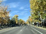 Drive_to_Marble_005_iPhone_10182020 - Driving along the East Main Street through Aspen with lots of nice Fall colors lining the street
