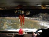 Dudhsagar_Falls_011_jx_11122009 - Jeep crossing a river on its way to Dudhsagar Falls