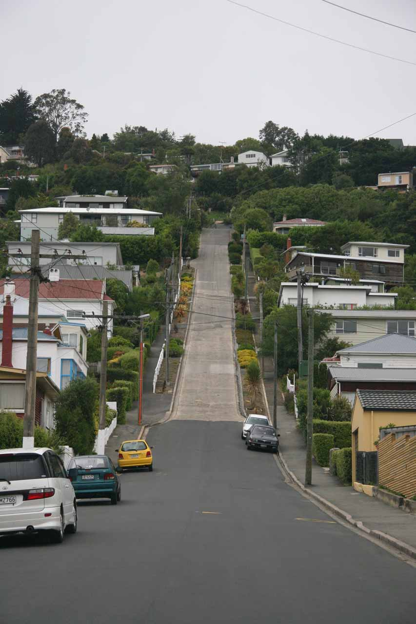 Dunedin was both charming and quirky, where its quirkiness included the apparent world's steepest street at Baldwin Street where traffic was only allowed to go down but not up
