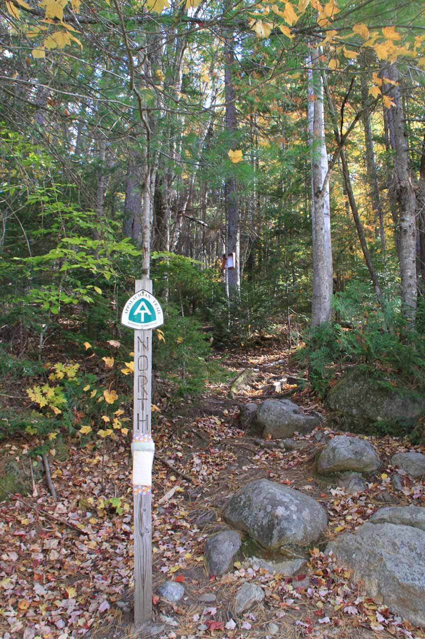 This was the north end of the Appalachian Trail by the E B Hill Road