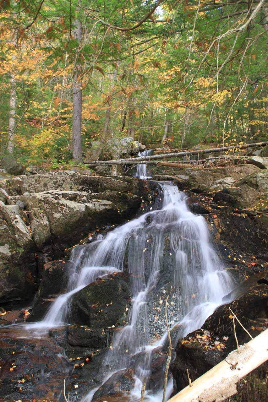 This was one of the more attractive cascades seen at the beginning of the Cascade Trail section of the loop