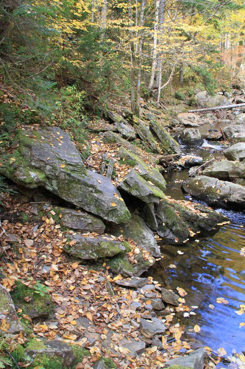 Rocky and uneven spur trail for Lower Dunn Falls