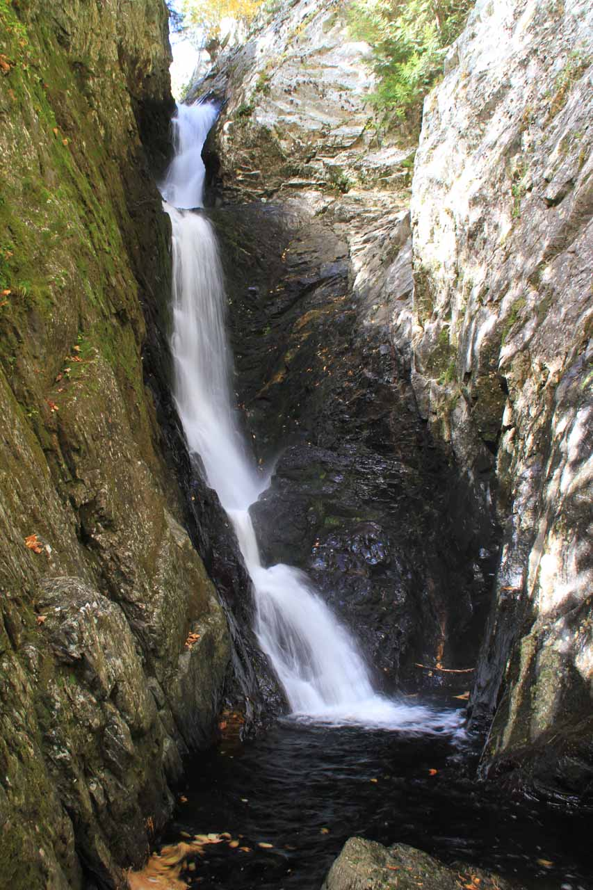 This was what Lower Dunn Falls looked like without the log cutting across it
