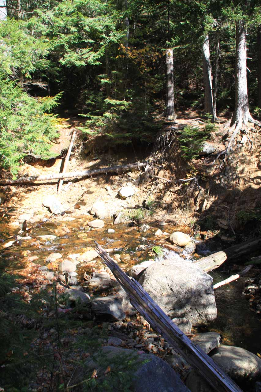 This was the stream crossing above the Lower Dunn Falls