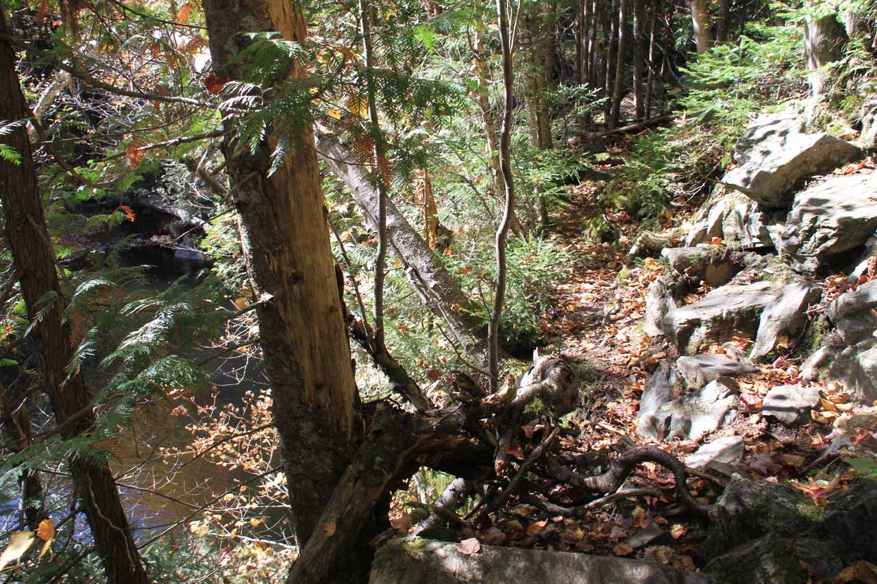 The steep and narrow ascent for Upper Dunn Falls