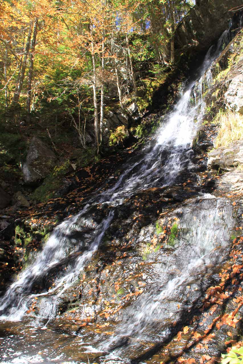 This was the main part of the elusive Upper Dunn Falls, though this photo only shows just part of its total drop