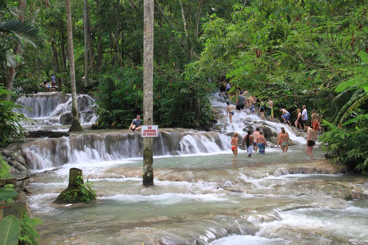 Observing the last bit of climbing of the Dunns River Falls