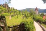 Durnstein_199_07072018 - The trail beneath the old castle ruins and castle walls leading back down to the town of Durnstein