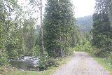 Dyrvedalen_006_06282019