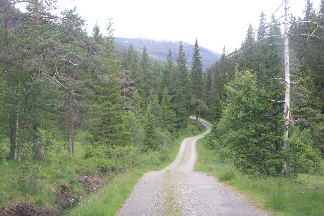 Dyrvedalen_008_06282019 - The narrow but not-as-rough unpaved private road towards what I thought was Siseljafossen