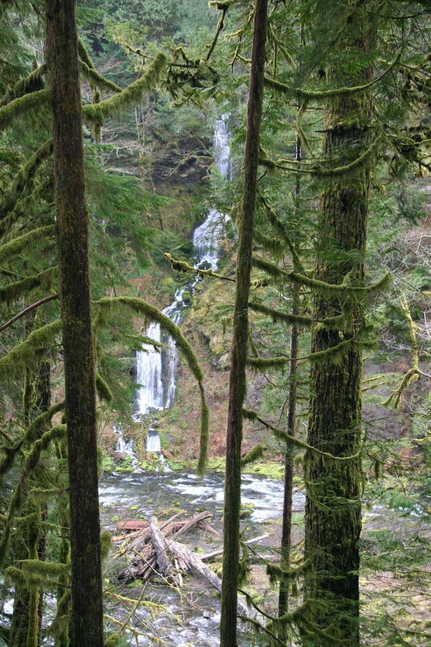 One of many waterfalls on the Eagle Creek Trail