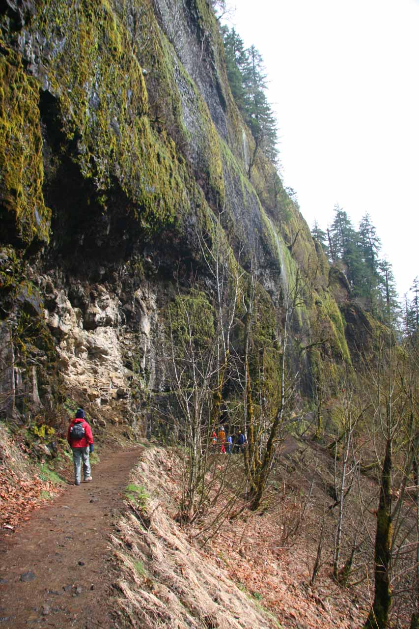 Julie approaching a part of the trail with some mossy overhangs