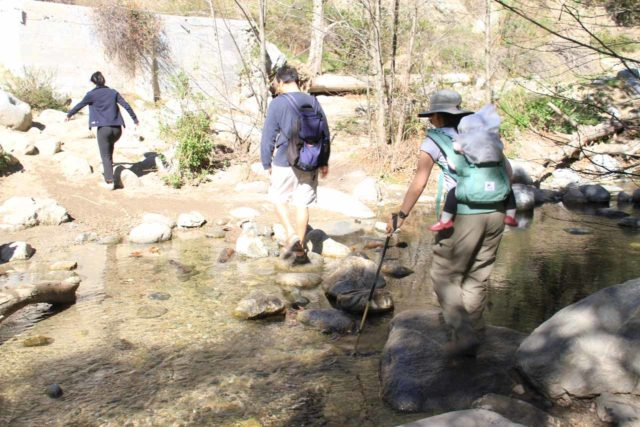 The most common use of trekking poles as far as we're concerned on our waterfall hikes is when we know we have some extensive stream crossings and wish to keep our feet dry. In this picture, we had the added motivation of making sure we stayed upright so our daughter wouldn't fall