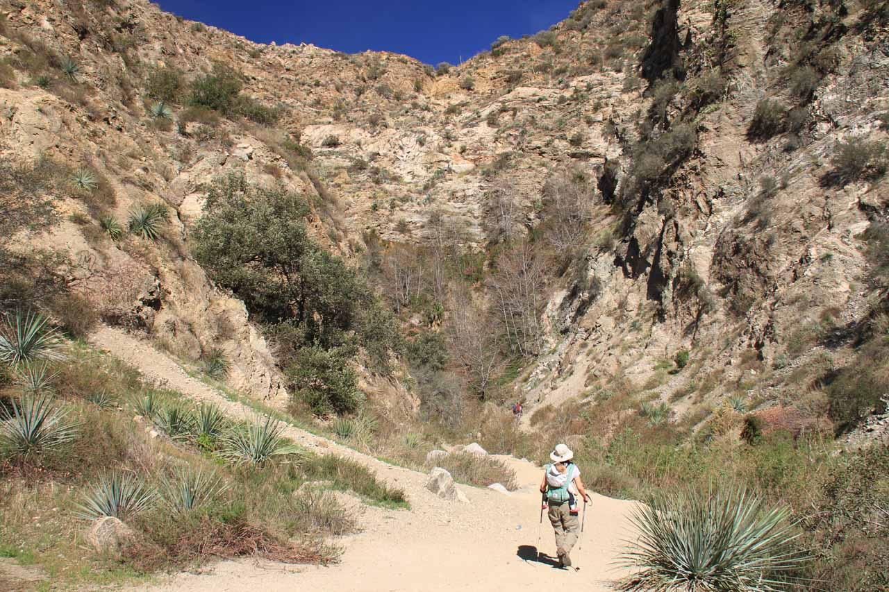 Deep in Eaton Canyon