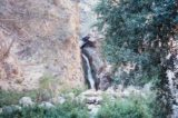 Eaton_Canyon_Falls_001_scanned_02242002