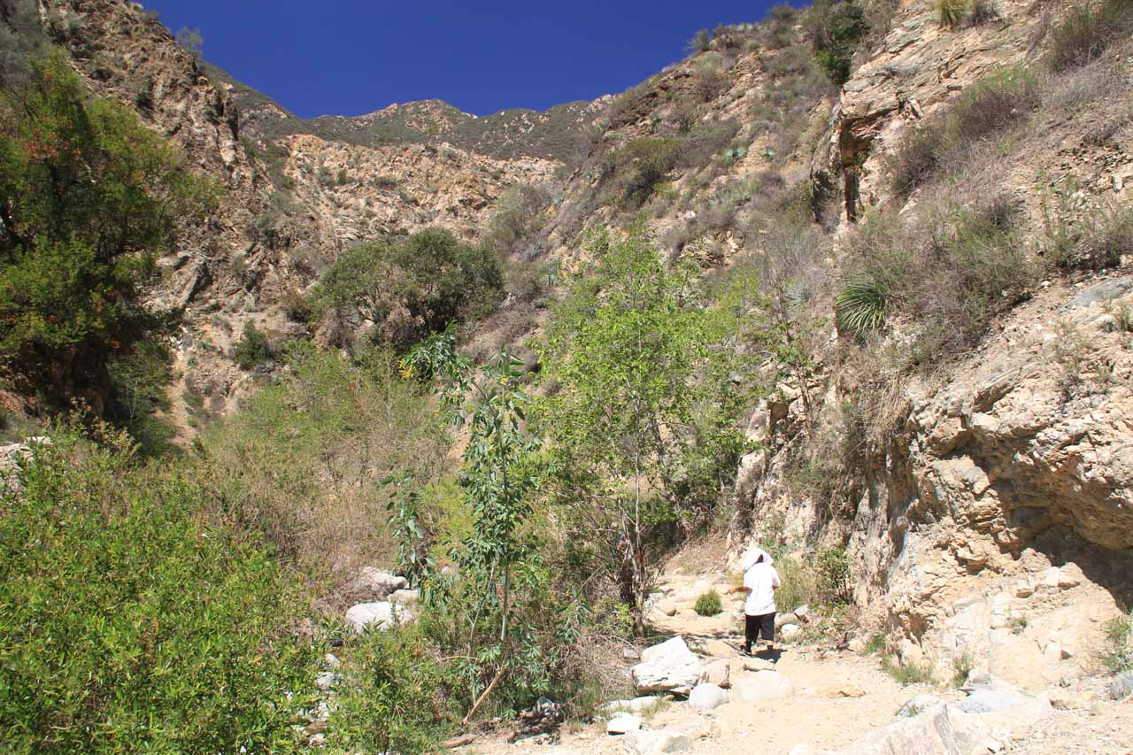 The drawback of having such a late start on the Eaton Canyon Falls hike was that the canyon no longer provided shade and relief from the hot sun