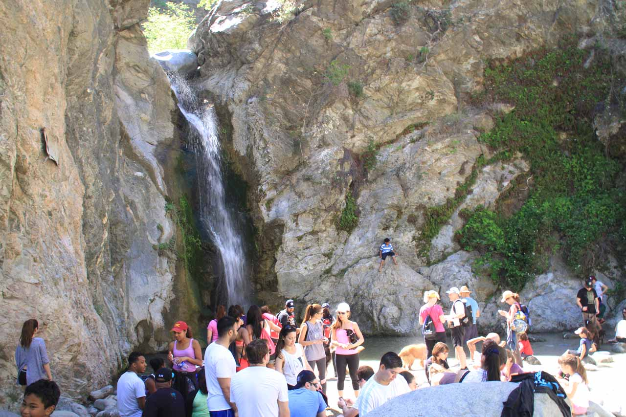 The really busy scene at Eaton Canyon Falls