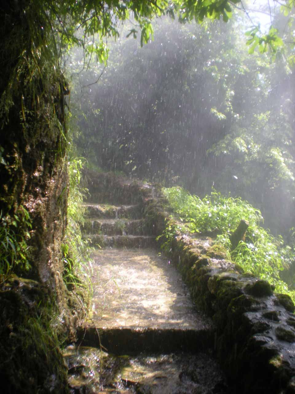 Very wet and misty path beneath Karanos to reach the bridge allowing for a view of the other Edessa Waterfalls when the other footpath was closed