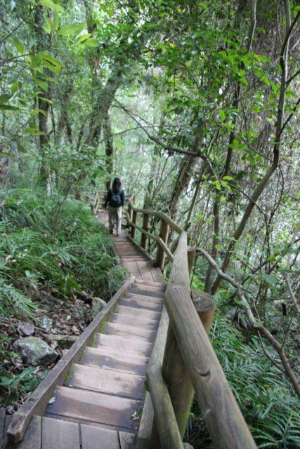 Ellenborough_Falls_020_05042008 - Julie descending steps to access the base of Ellenborough Falls