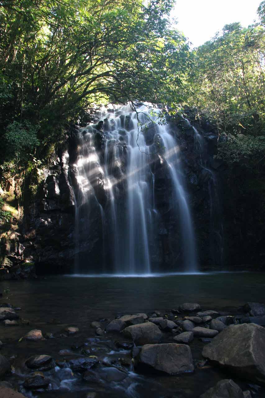 Ellinjaa Falls was the nearest waterfall to Zillie Falls along the Waterfall Circuit