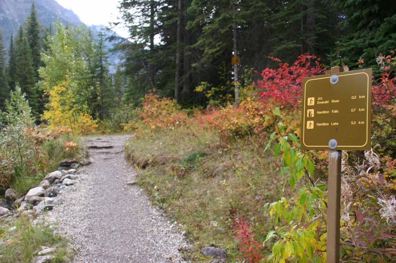 The trailhead to Hamilton Falls