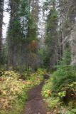 Emerald_Lake_030_09172010