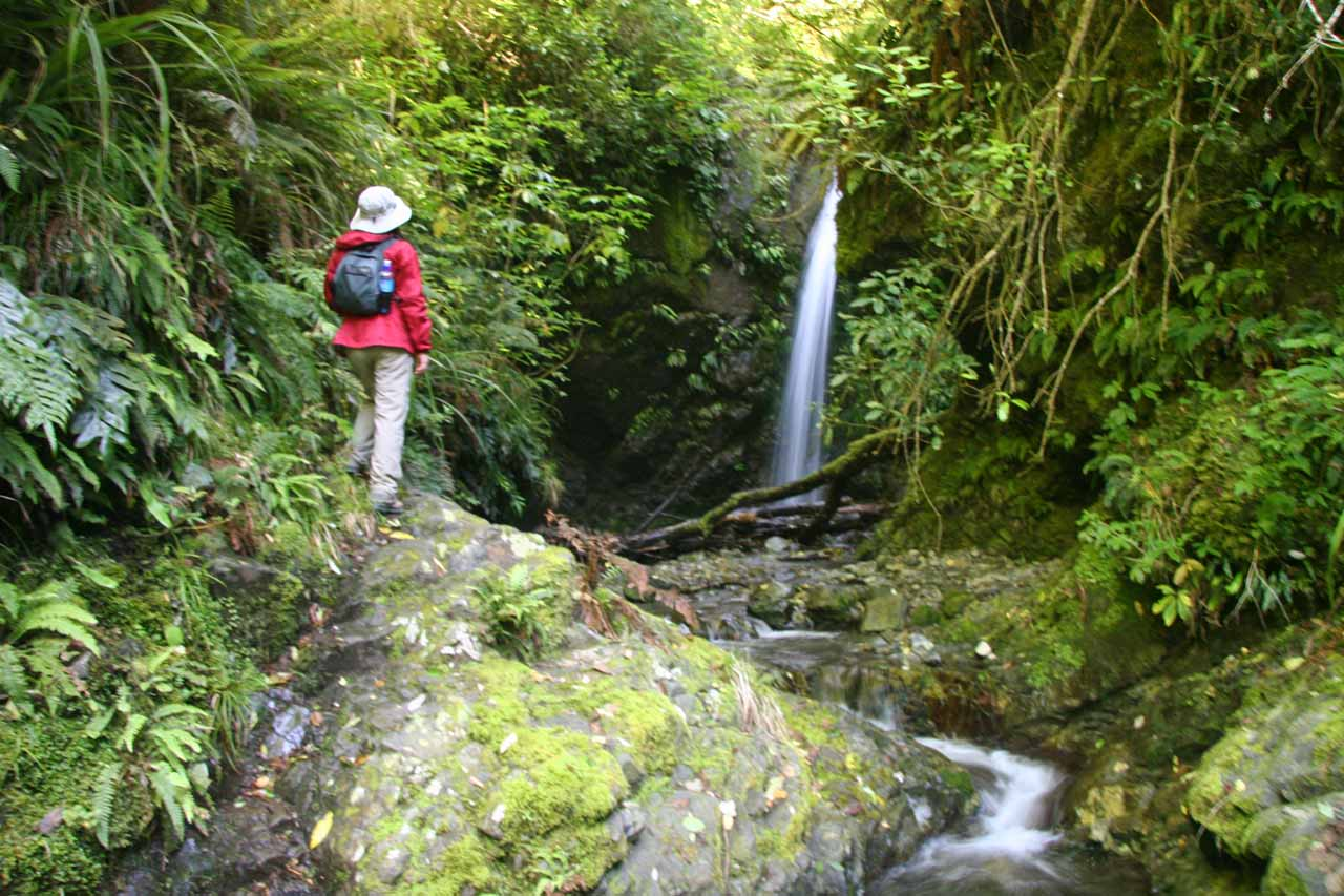 Julie scrambled onto some slippery and mossy rocks for this unusual view of Emily Falls